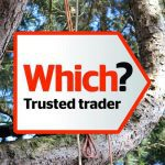 Tree surgeon in Buckinghamshire with Which? Trusted Traders logo