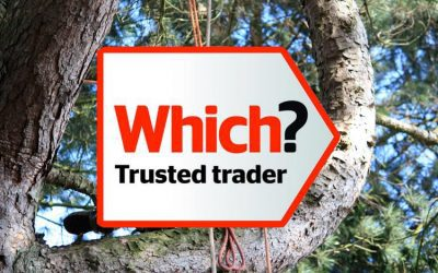 Which? Trusted Tree Surgeon