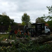 Wood chipping in site clearance Oxford