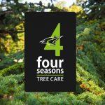 Tree services being undertaken in Oxford