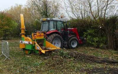 Tree Clearance Work in Oxfordshire