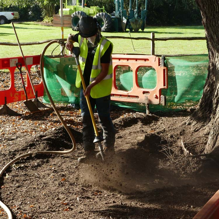 Airspade tree services Oxfordshire