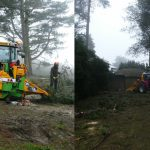 Tree removal headington