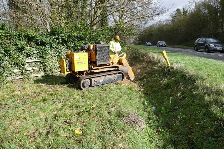 tree removal kidlington