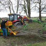 tree surgery kidlington
