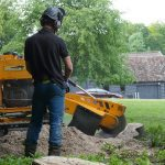 Tree Stump Removal Watlington