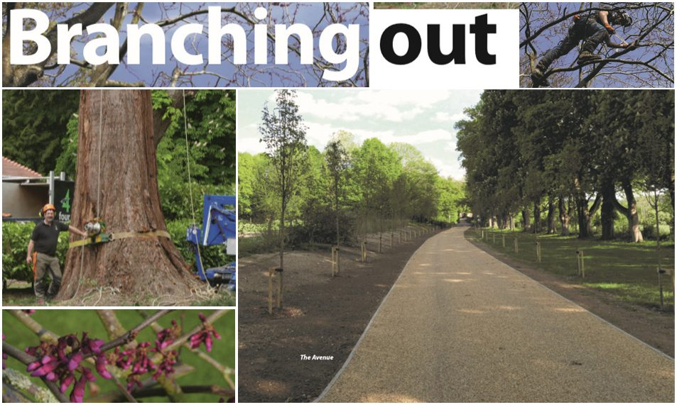 """Branching Out"" – Thame Out Magazine Article"