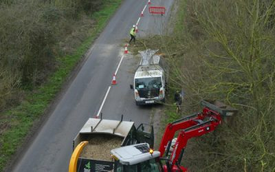 Tree Surgery & Felling Work on Roadside Trees In Oxfordshire