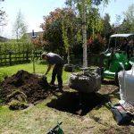 tree planting thame
